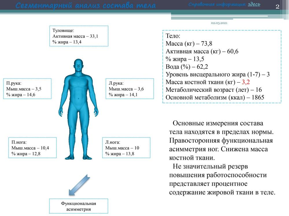 Сегментарный анализ тела
