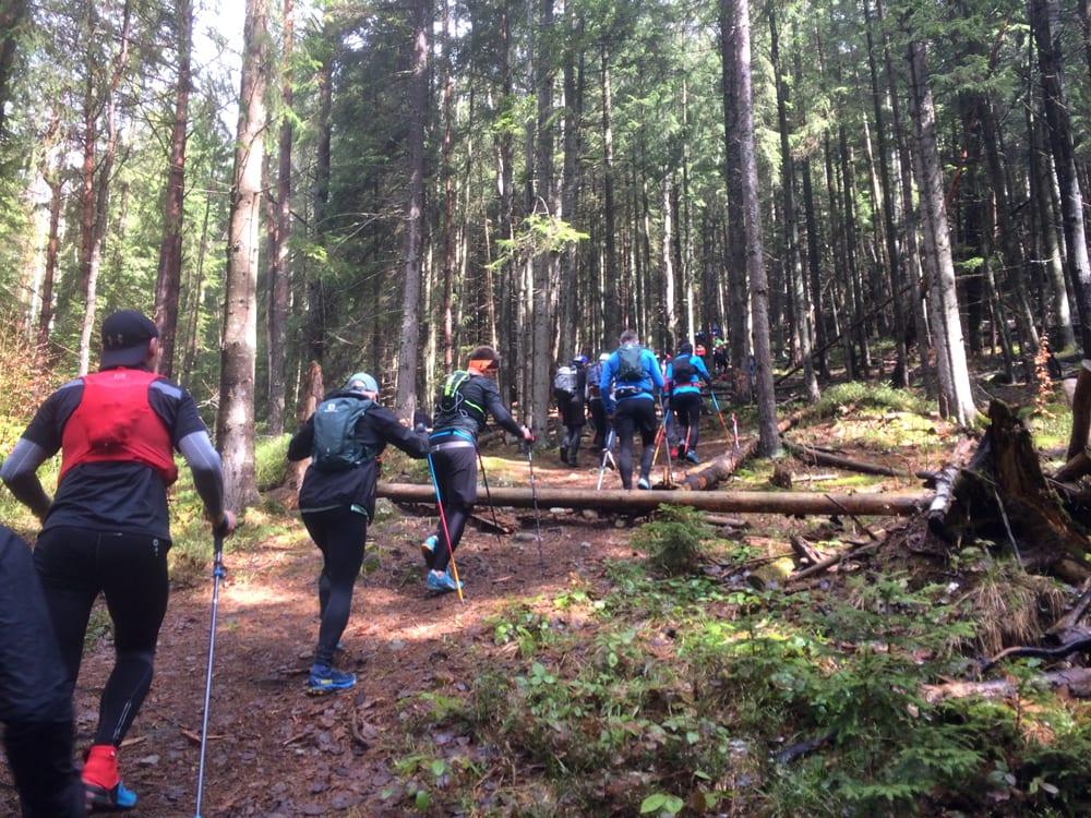 Подъём на Магуру на забеге Karpaty Dynafit Trail 2021