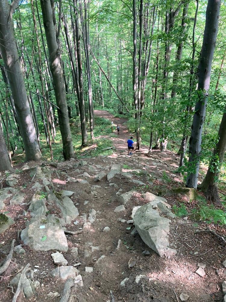 Огляд Gorgany Skole Ultra Trail 2021: Мій Найшвидший Трейл 1